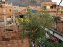 eltono-barrios-ga08