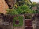 eltono-barrios-pv07
