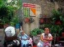 eltono-barrios-tamp22
