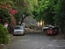 eltono-barrios-tamp42