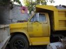 eltono-barrios-tamp46