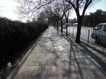 eltono-promenade6-07